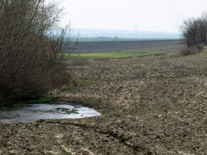 Между потока и зелената нива е намерено тялото на пребития йезид. Снимка: Дорейд Ал Хафид. Всички права запазени.